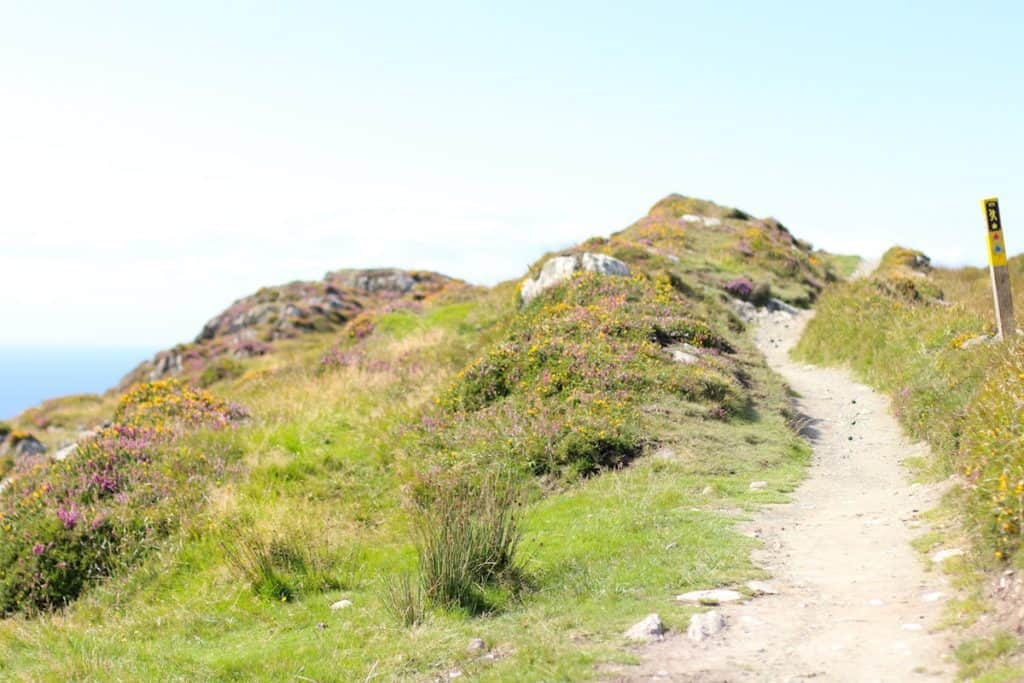 A dirt path on the Sheep's Head Way Loop